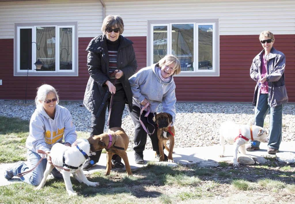 Carol, Maureen, Maura & Sue & pitties