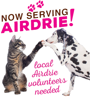 help-out_airdrie-volunteers